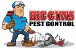 Big Guns Pest Control