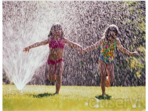 Sprinkler Repair Reno