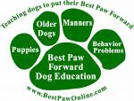 Teaching dogs to put their Best Paw Forward