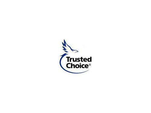 Alternatives Insurance® of Chesterfield