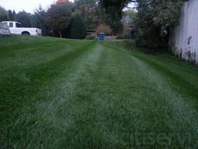8% discount for prepaid yearly lawn program